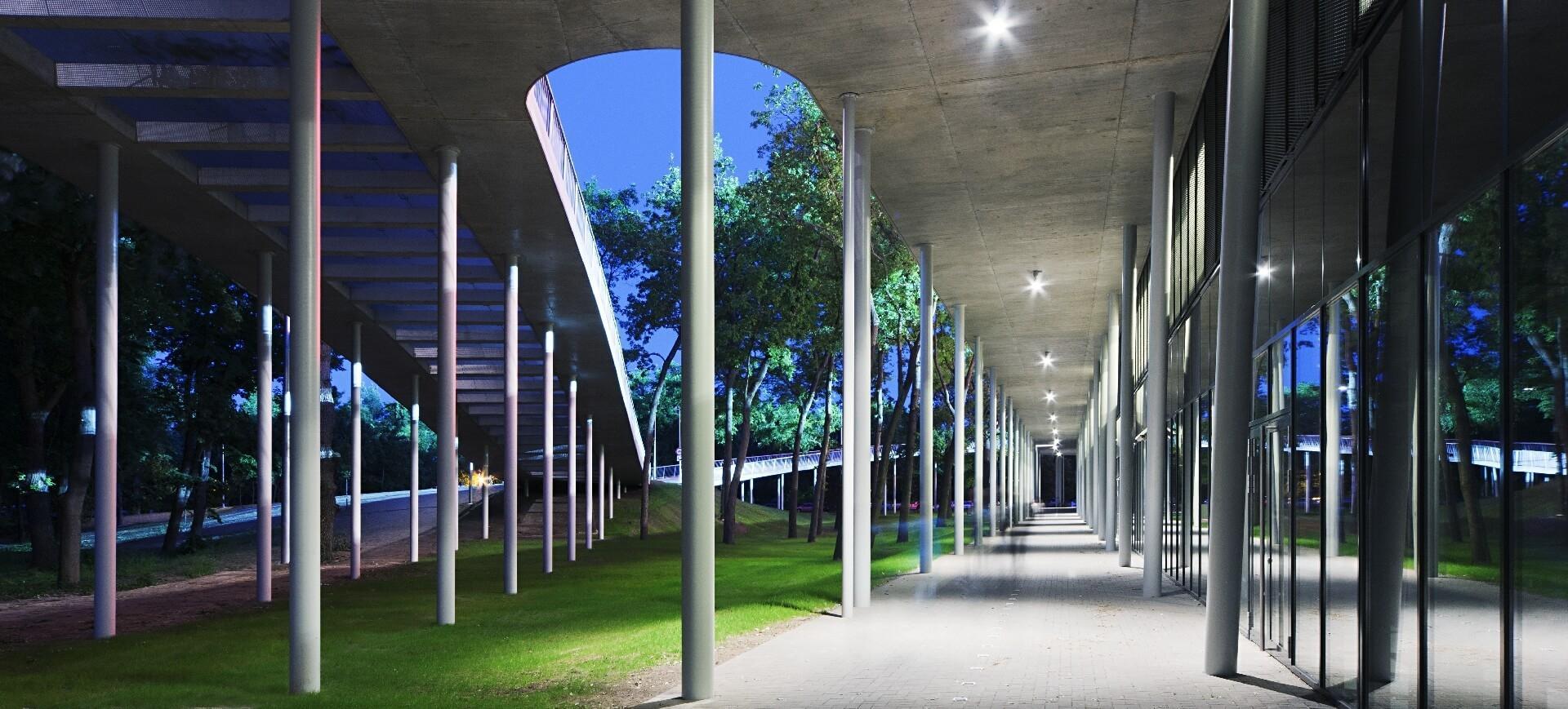 Nagyerdei Stadion fák között kanyargó kiemelt ösvény